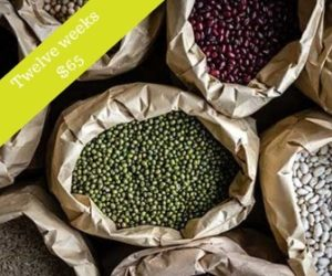 Photo of different varieties of dried beans.