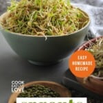 Pin for pinterest with image of sprouted lentils and beans