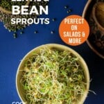 PIn for pinterest graphic with image of sprouts in a bowl