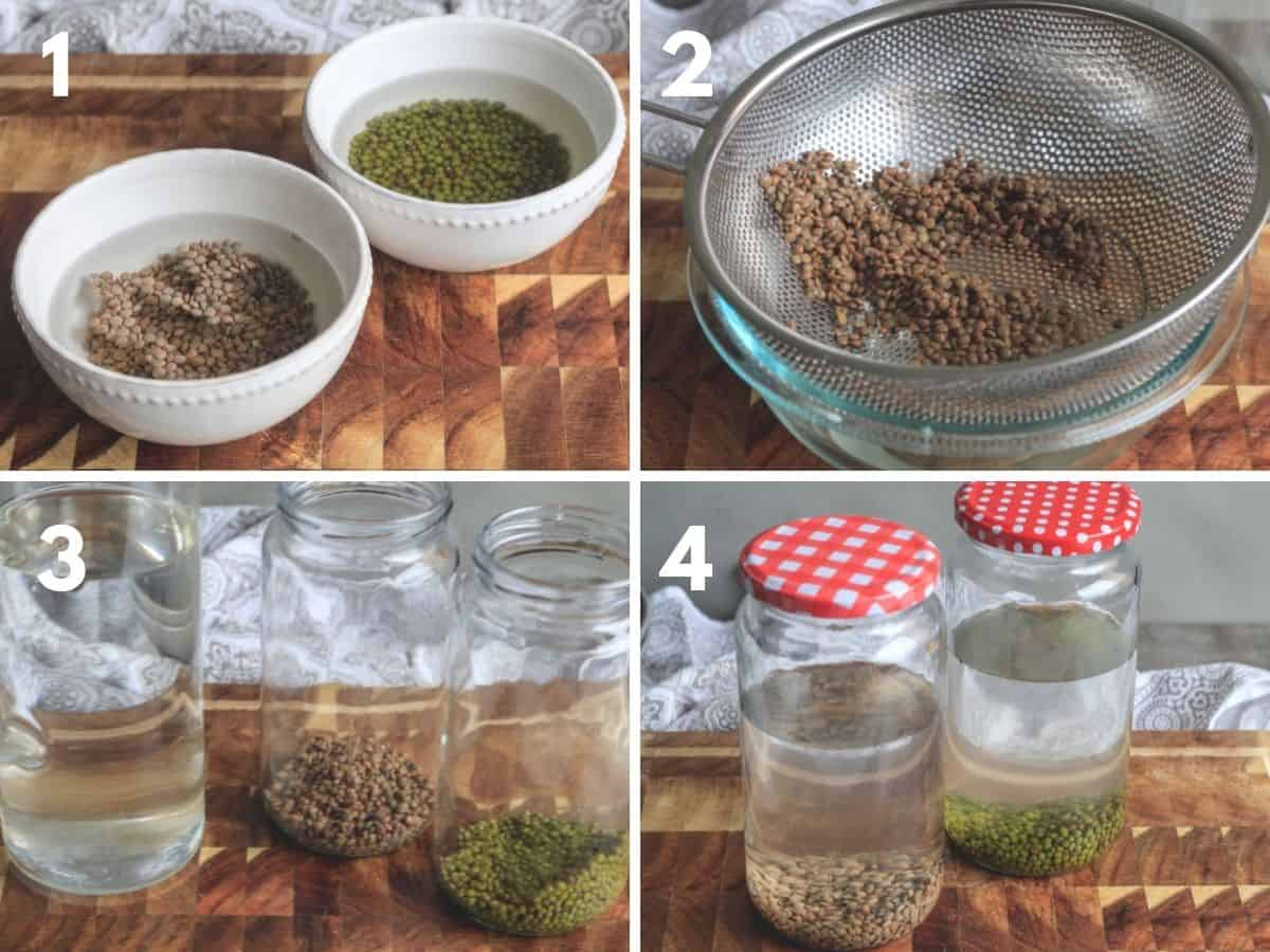 Collage of images to show how to get seeds ready for growing sprouts