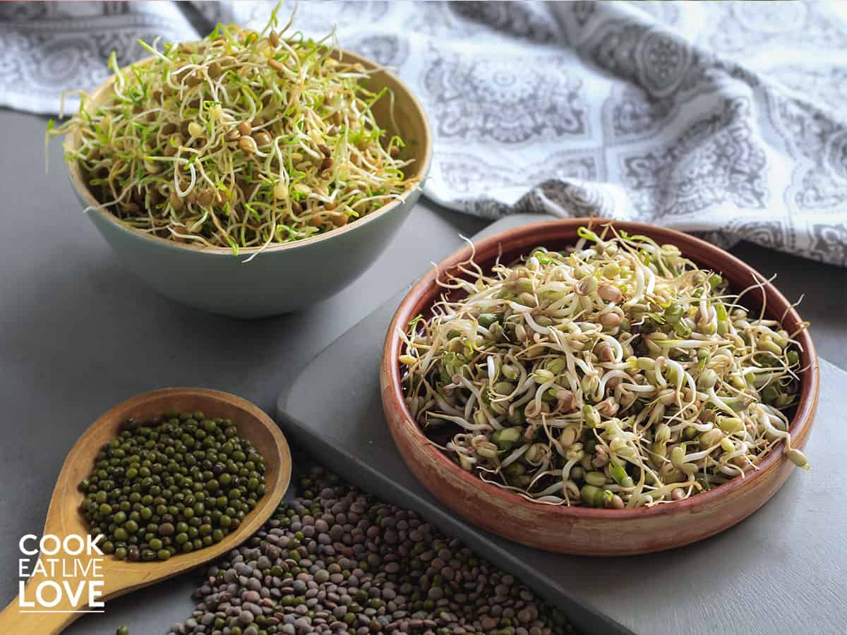 Lentil sprouts and mung bean sprouts in bowls on table