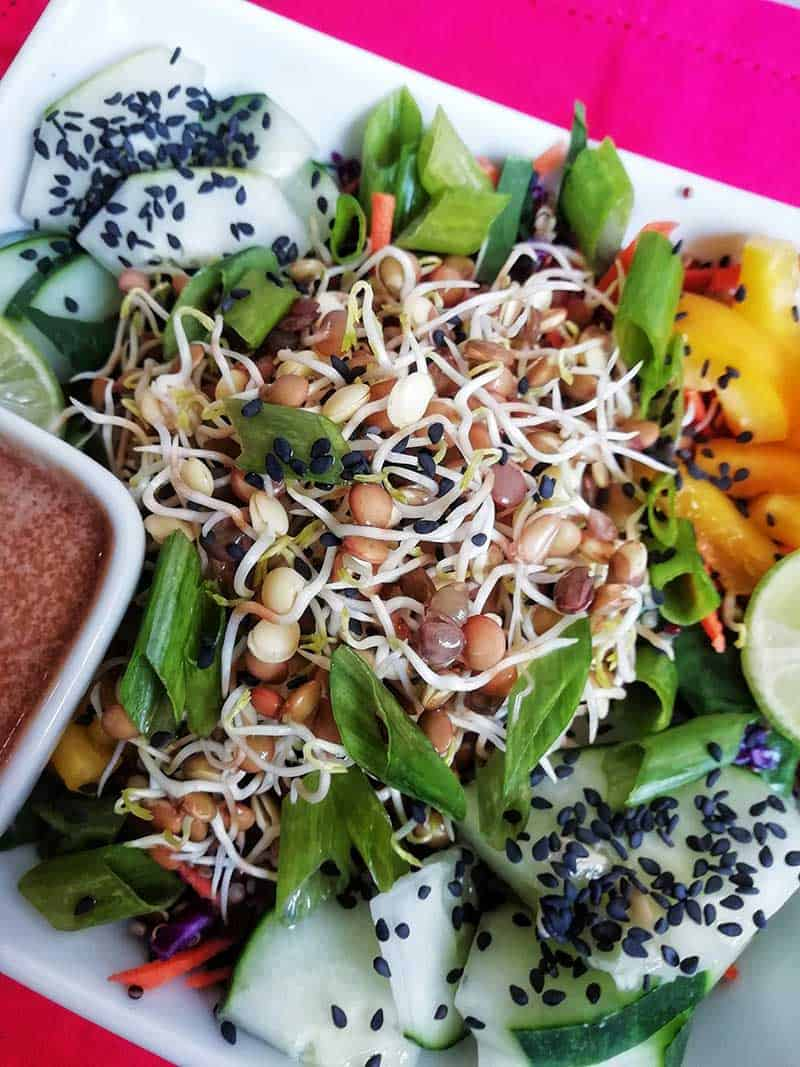 Sprouted lentil recipe_recipe box
