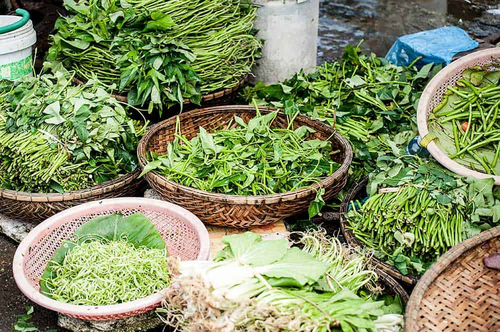 Exploring health and herbs through cooking