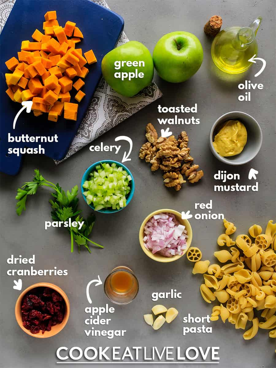 Ingredients to make butternut squash pasta salad