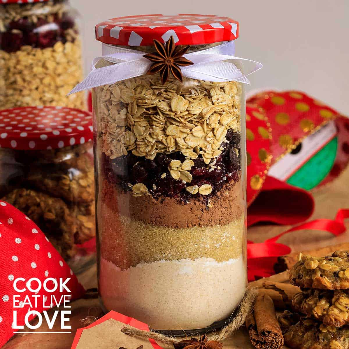 Vegan chocolate oatmeal cookie ingredients in jar to give as gift.