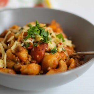 Close up view of lentil pasta served up in gray bowl and topped with cheese.