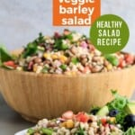 Pin for pinterest graphic with barley salad picture