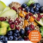 Pin for pinterest graphic with nourish bowl closeup image and text