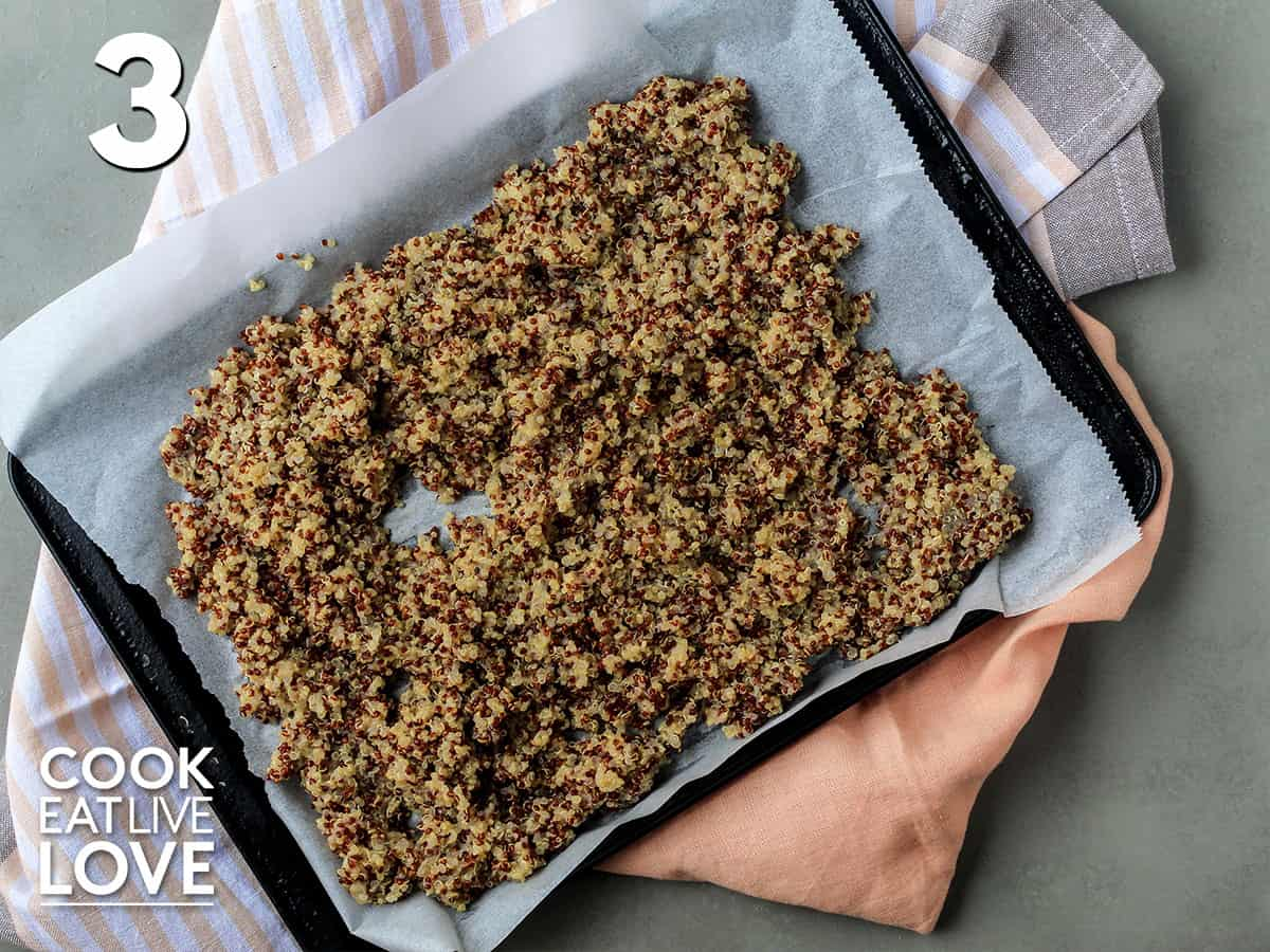 Cooked quinoa spread out on a baking sheet to cool