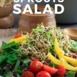 Pin for pinterest graphic with single image of lentil sprouts salad