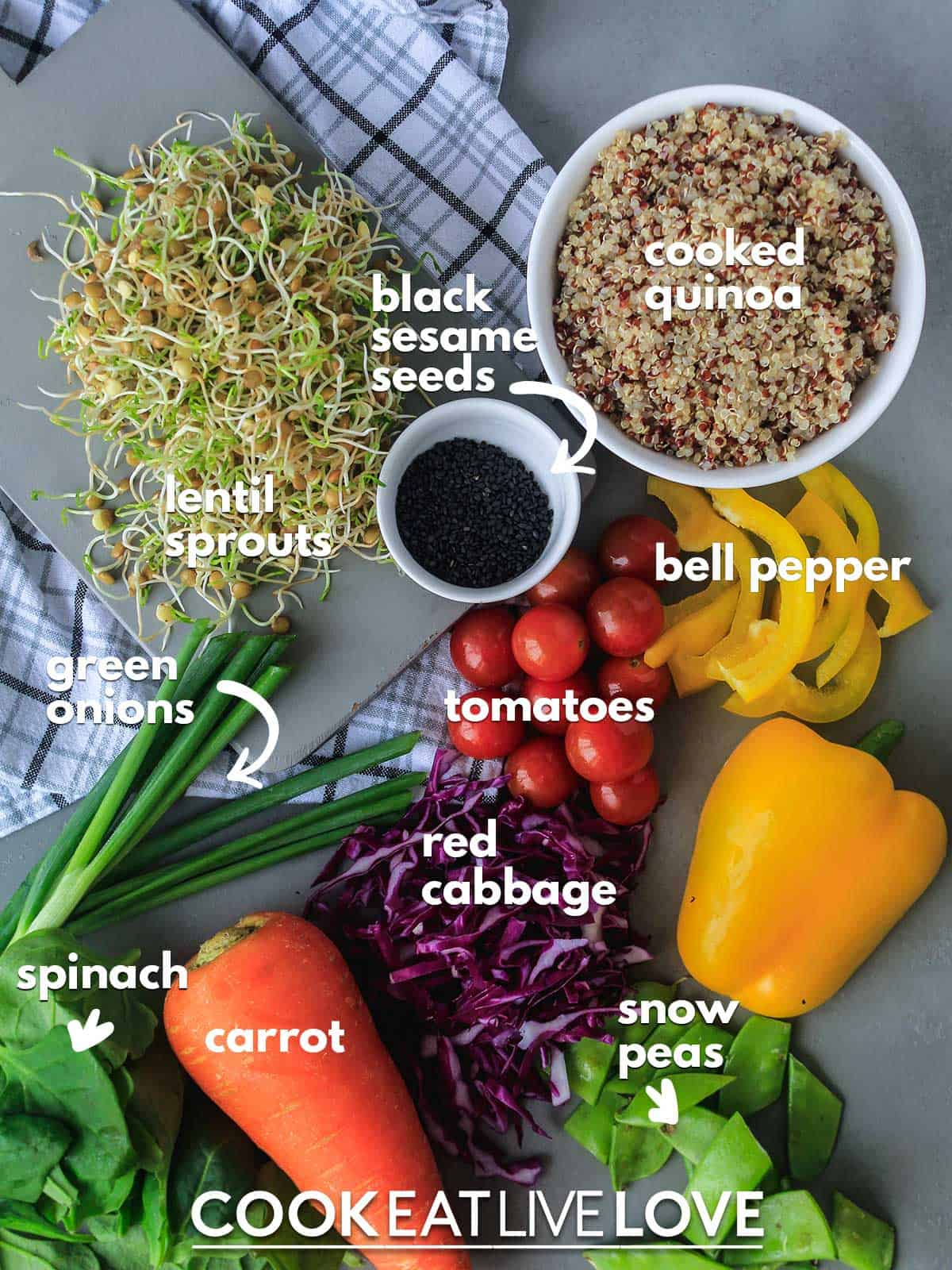 Ingredients you need to make this sprouted lentils recipe