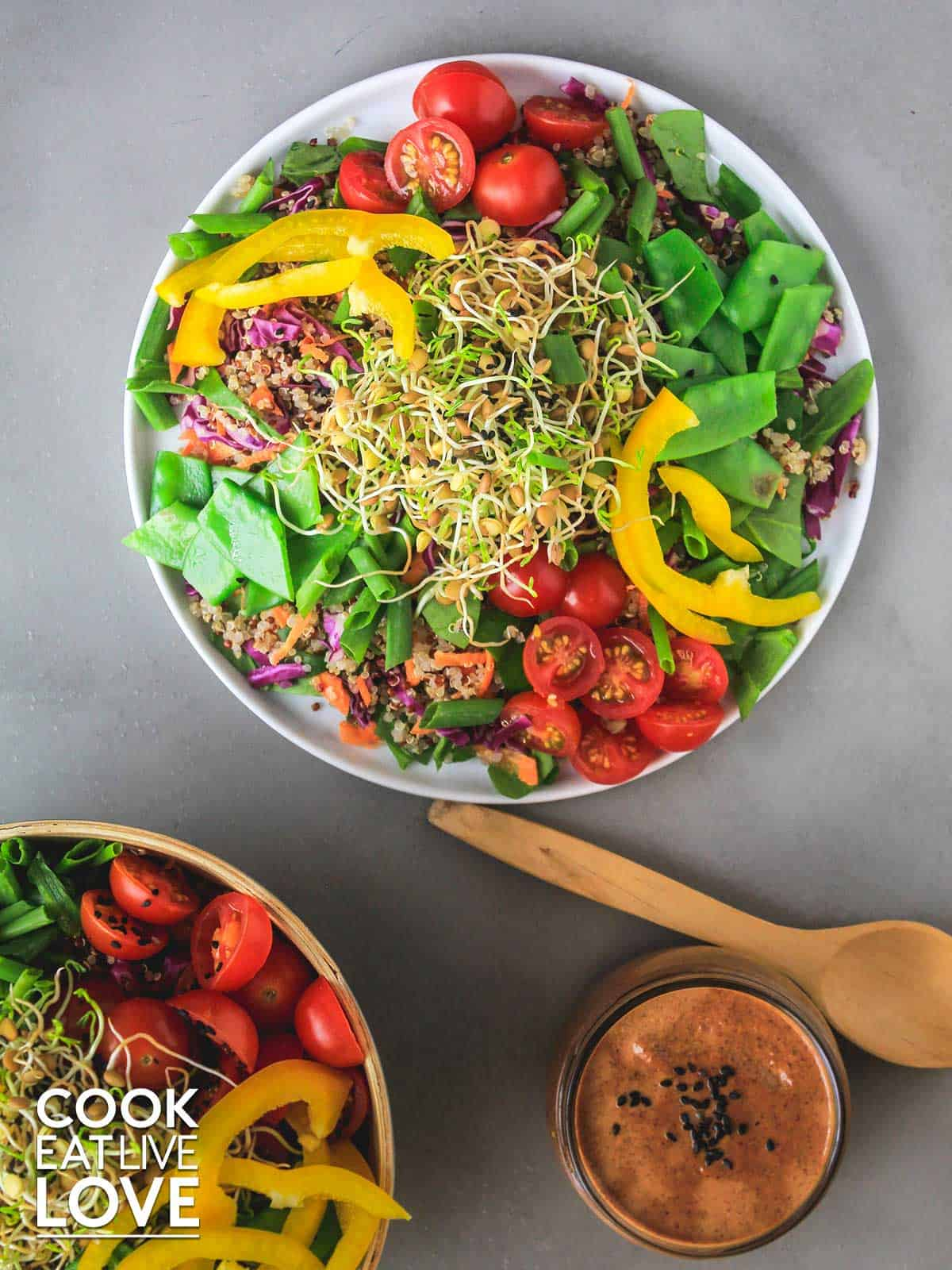 Lentil sprouts on salad plate with dressing and bowl of salad