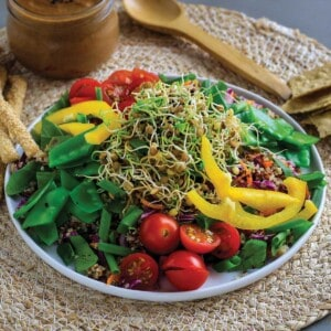 Colorful salad with lentil sprouts on a plate